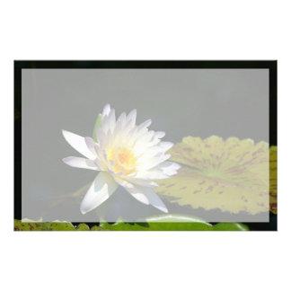 Papeterie Fleur de nénuphar de Lotus blanc