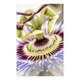 Papeterie Fleur de passion