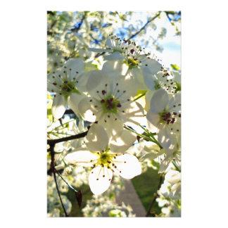 Papeterie Fleurs de cerisier de Yoshino