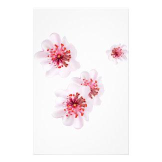 Papeterie Fleurs roses de Sakura de fleurs de cerisier dans