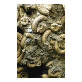 Papeterie fossiles incorporés d'escargots