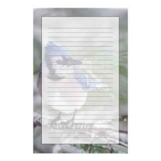 Papeterie Geai bleu, cristata de Cyanocitta