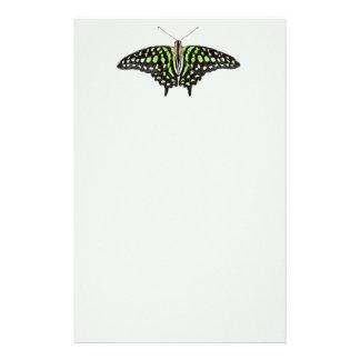 Papeterie Geai coupé la queue vert et papillon noir peint