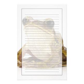 Papeterie Grenouille d'arbre d'or