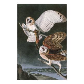 Papeterie Hiboux de grange, les oiseaux de l'Amérique John
