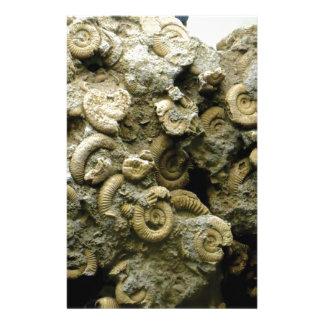 Papeterie le fossile écosse l'art