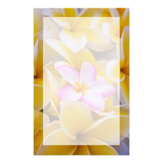 Papeterie Les Etats-Unis, Hawaï, Oahu, Plumeria fleurissent