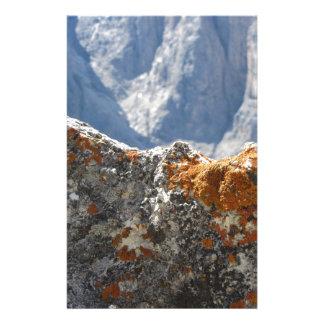Papeterie Lichens oranges s'élevant sur le visage de roche