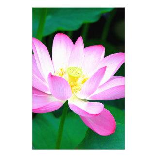 Papeterie lotus