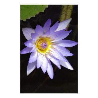 Papeterie lotus bleu du Nil