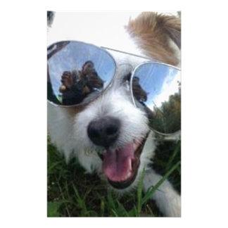 Papeterie Lunettes de soleil l'AVENIR LUMINEUX de chien pour