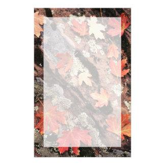 Papeterie L'Utah, parc national de Zion, motifs d'automne