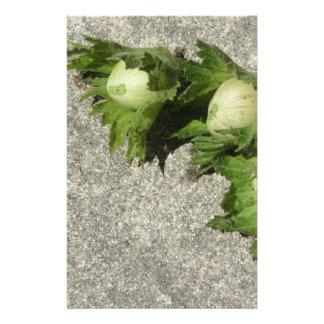 Papeterie Noisettes vertes fraîches sur le plancher