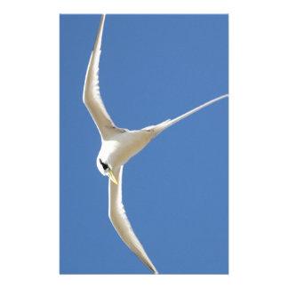 Papeterie Oiseau Paille en Queue Ile Maurice