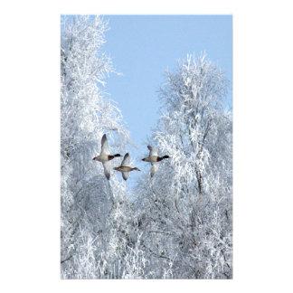 Papeterie Oiseaux ruraux de paysage d'hiver de Noël