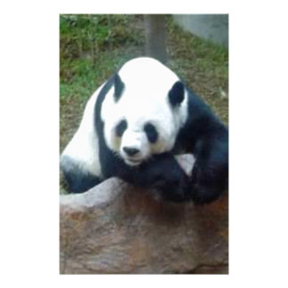 Papeterie Ours panda chinois