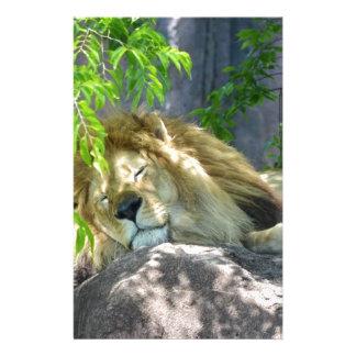 Papeterie petit somme de lion