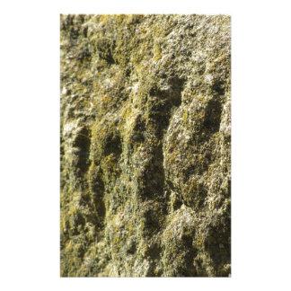 Papeterie Pierre patinée avec l'arrière - plan de lichen et
