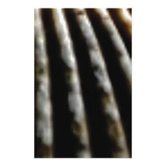 Papeterie plis de brun de la coquille