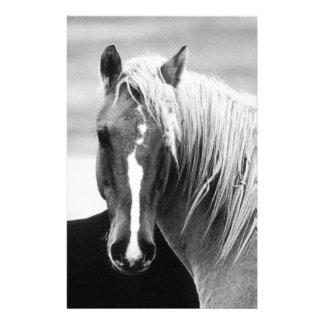 Papeterie Portrait de cheval de BW