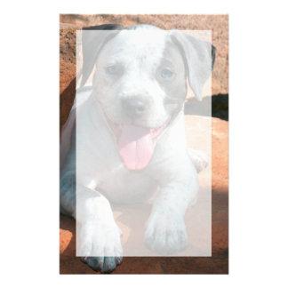 Papeterie Portrait de chiot du Staffordshire Terrier