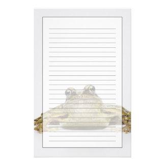 Papeterie Portrait d'une grenouille dans un studio blanc