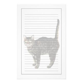 Papeterie Position masculine domestique de chat tigré