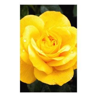 Papeterie Rose jaune