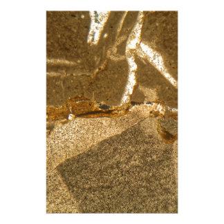 Papeterie Section mince de carbonate triassique sous le