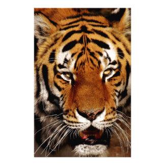 Papeterie Tigre de Bengale