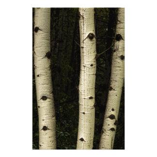 Papeterie Trois piliers de la forêt