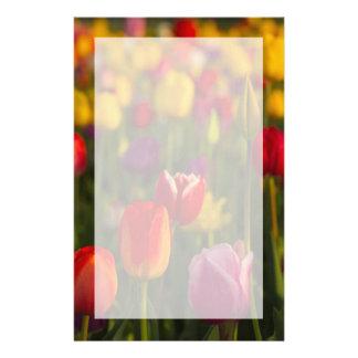 Papeterie Tulipes, festival de tulipe, Woodburn, Orégon,