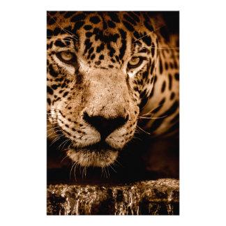 Papeterie yeux de égrappage de l'eau de jaguar