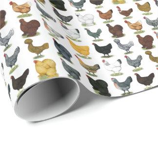 Papier Cadeau 49 poules de poulet