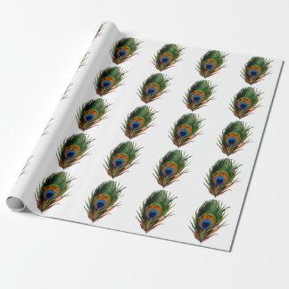 Papier Cadeau Arrière - plan de la plume de paon de