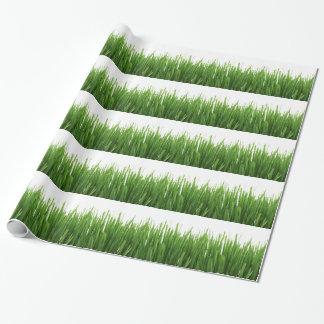 Papier Cadeau Arrière - plan d'herbe verte