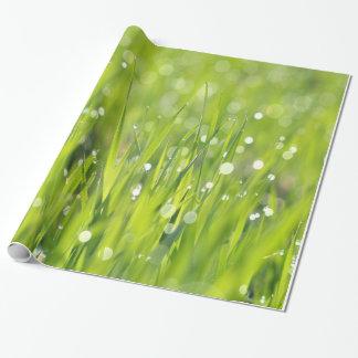 Papier Cadeau Baisses de rosée sur l'herbe