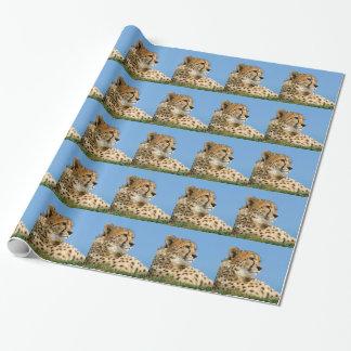 Papier Cadeau Beau guépard