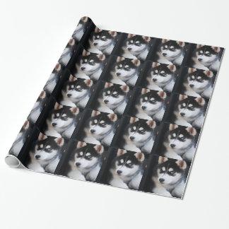 Papier Cadeau Beau un chien de traîneau sibérien 2 d'oeil bleu