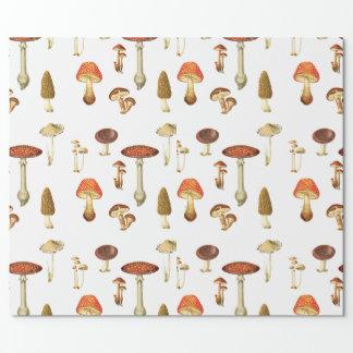 Papier Cadeau Bijoux du papier d'emballage de forêt