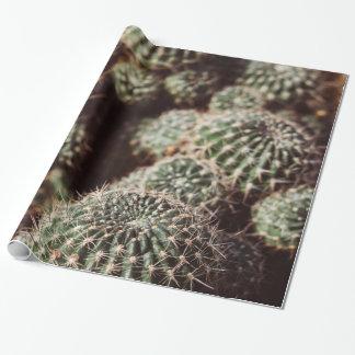 Papier Cadeau Champ des cactus, photographie botanique rouge