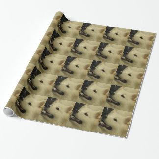 Papier Cadeau Chien de Samoyed