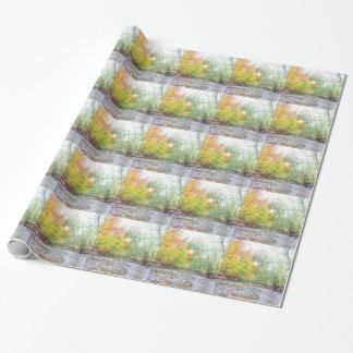 Papier Cadeau Crique - automne