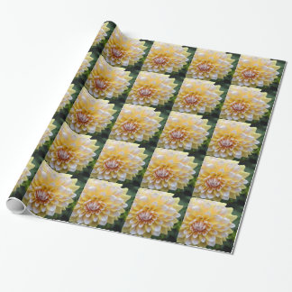 Papier Cadeau Dahlia jaune et blanc