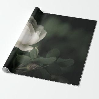 Papier Cadeau Dogrose blanc sur un fond foncé