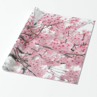 Papier Cadeau Festival de Hanami de ressort, fleurs de cerisier