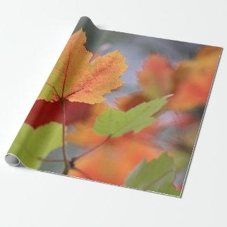 Papier Cadeau Feuille d'automne