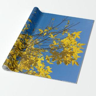 Papier Cadeau Feuille jaune sur la photo d'arbre d'automne
