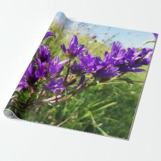 Papier Cadeau Fleur pourpre élégante sauvage