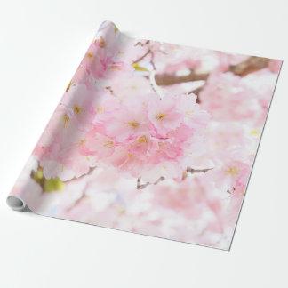 Papier Cadeau Fleurs de cerisier roses de Sakura d'arbre